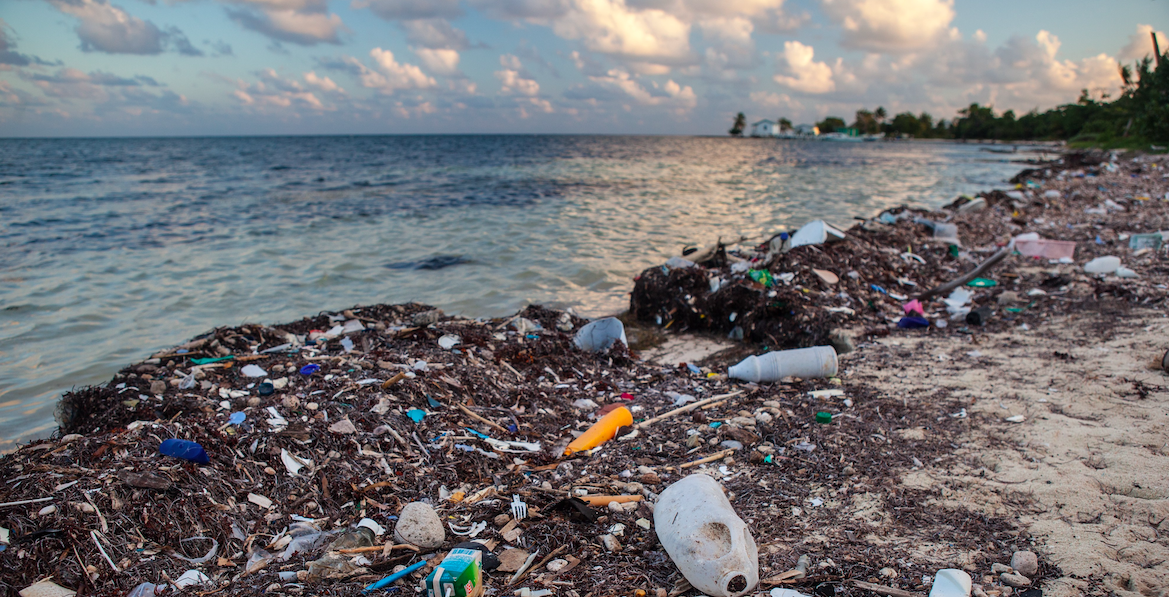 The End of Plastic Waste: How synthetic biology is taking on the garbage patch