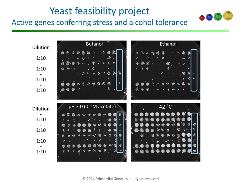 Yeast-Genetics-Meeting-in-Seattle_Page_10