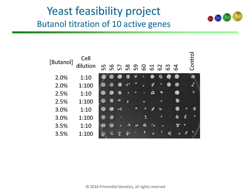 Yeast-Genetics-Meeting-in-Seattle_Page_11